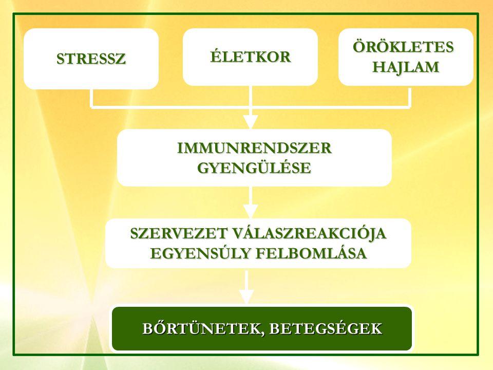 SZERVEZET VÁLASZREAKCIÓJA BŐRTÜNETEK, BETEGSÉGEK