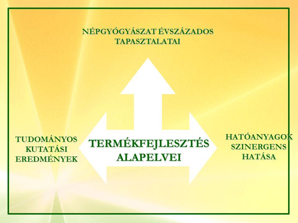 TERMÉKFEJLESZTÉS ALAPELVEI