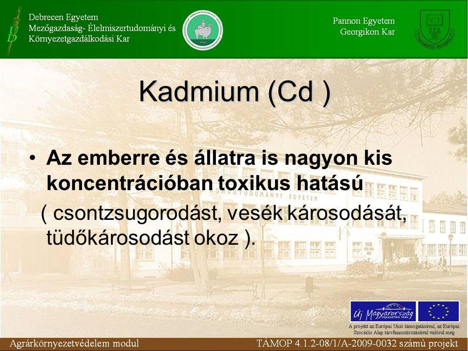 Kadmium (Cd ) Az emberre és állatra is nagyon kis koncentrációban toxikus hatású.