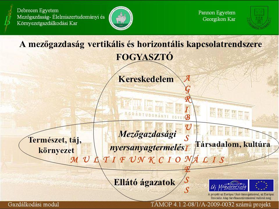 A mezőgazdaság vertikális és horizontális kapcsolatrendszere