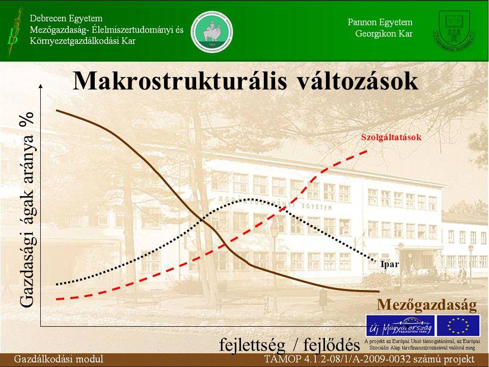 Makrostrukturális változások
