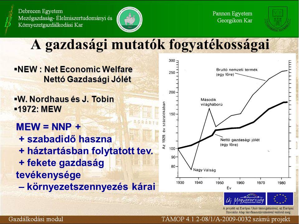 A gazdasági mutatók fogyatékosságai
