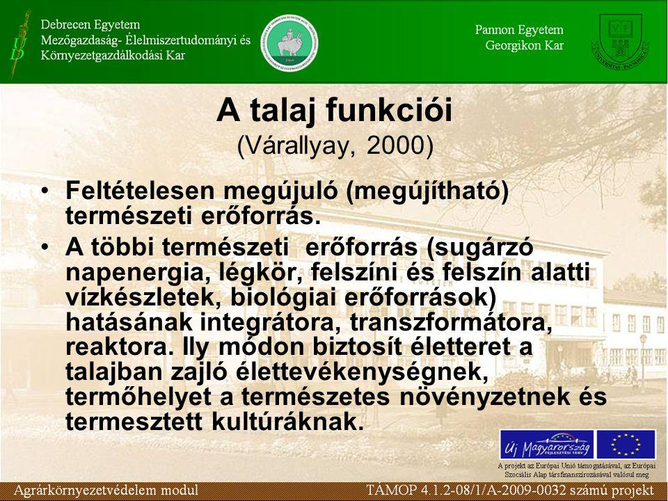 A talaj funkciói (Várallyay, 2000)
