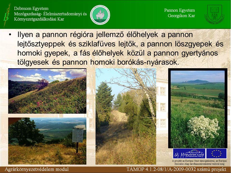 Ilyen a pannon régióra jellemző élőhelyek a pannon lejtősztyeppek és sziklafüves lejtők, a pannon löszgyepek és homoki gyepek, a fás élőhelyek közül a pannon gyertyános tölgyesek és pannon homoki borókás-nyárasok.