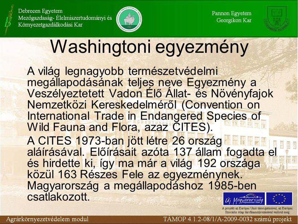 Washingtoni egyezmény
