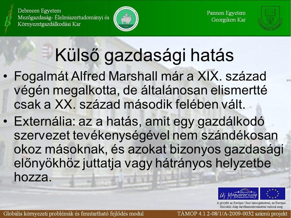 Külső gazdasági hatás Fogalmát Alfred Marshall már a XIX. század végén megalkotta, de általánosan elismertté csak a XX. század második felében vált.