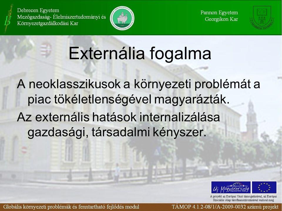 Externália fogalma A neoklasszikusok a környezeti problémát a piac tökéletlenségével magyarázták.