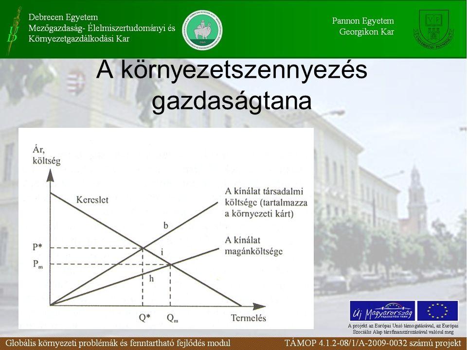 A környezetszennyezés gazdaságtana