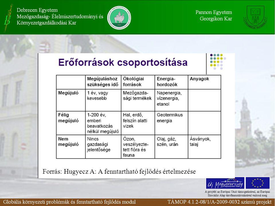 Forrás: Hugyecz A: A fenntartható fejlődés értelmezése