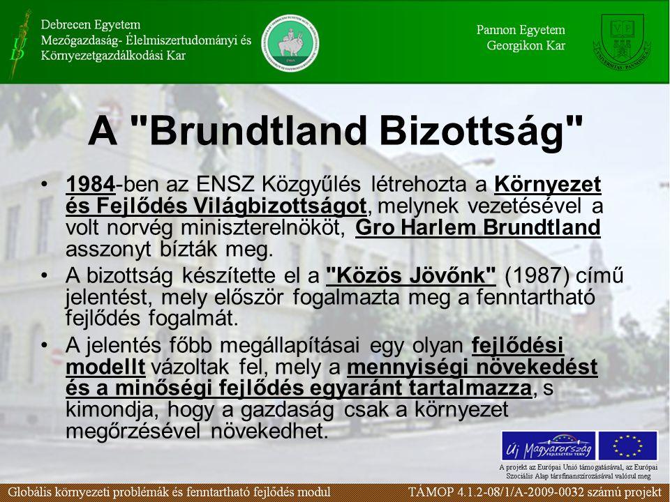 A Brundtland Bizottság