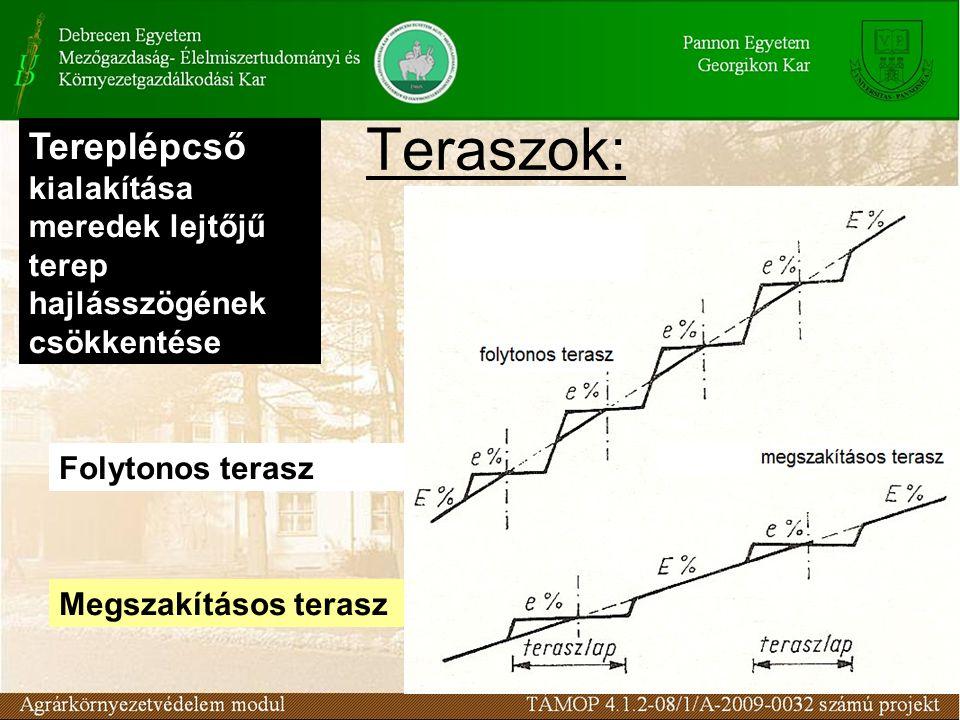 Teraszok: Tereplépcső kialakítása meredek lejtőjű terep hajlásszögének csökkentése. Folytonos terasz.