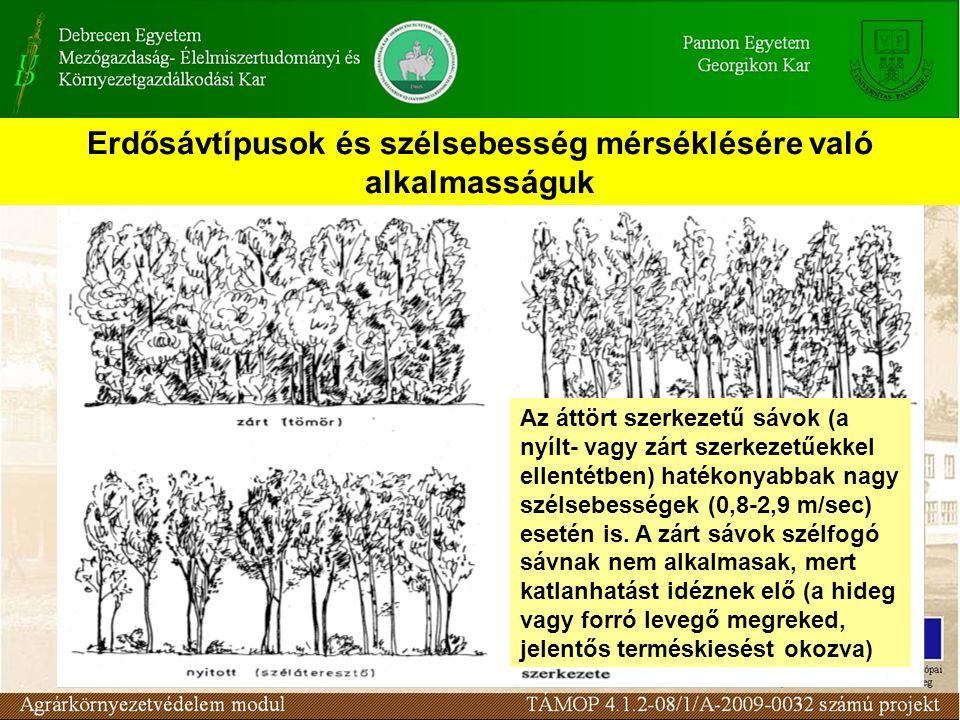 Erdősávtípusok és szélsebesség mérséklésére való alkalmasságuk