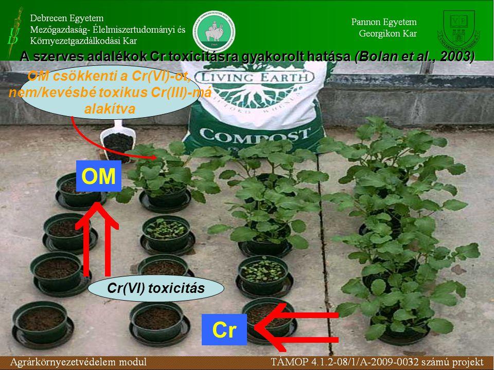 OM csökkenti a Cr(VI)-ot, nem/kevésbé toxikus Cr(III)-má