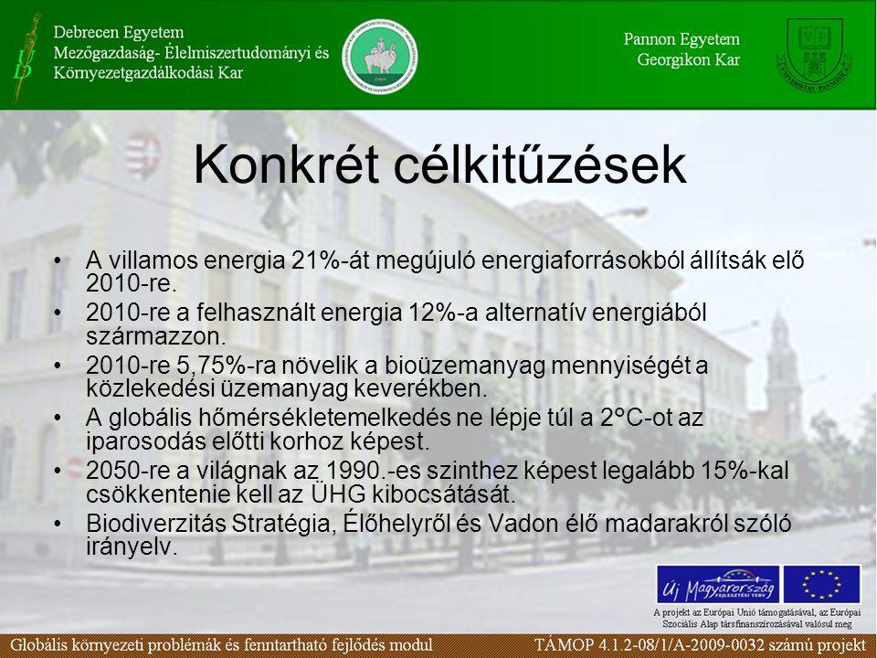 Konkrét célkitűzések A villamos energia 21%-át megújuló energiaforrásokból állítsák elő 2010-re.