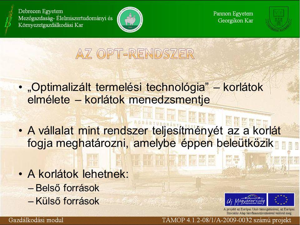 """""""Optimalizált termelési technológia – korlátok elmélete – korlátok menedzsmentje"""