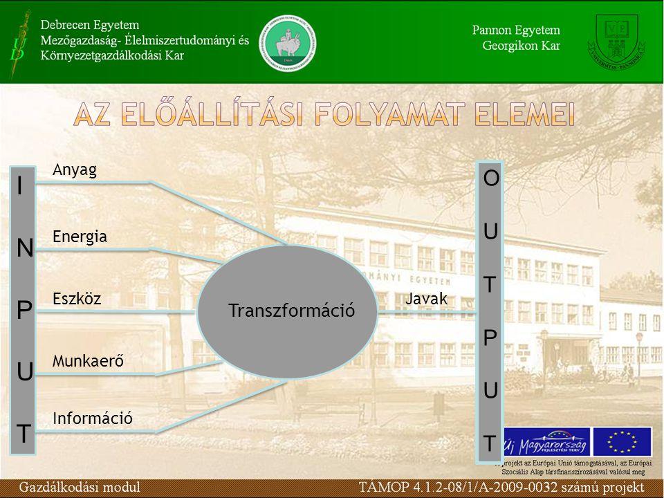I N P U T O U T P Transzformáció Anyag Energia Eszköz Javak Munkaerő