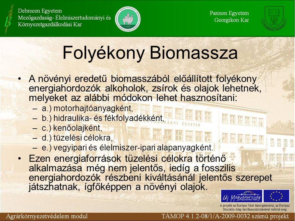 Folyékony Biomassza