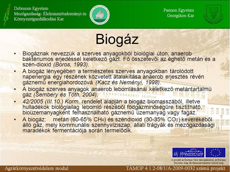 Biogáz