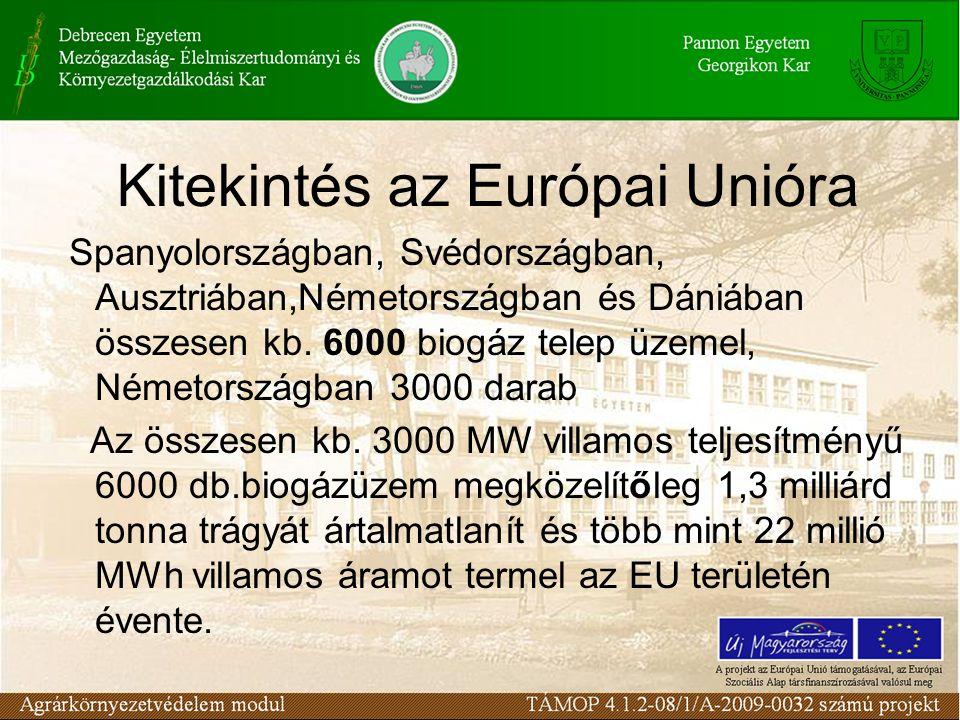 Kitekintés az Európai Unióra