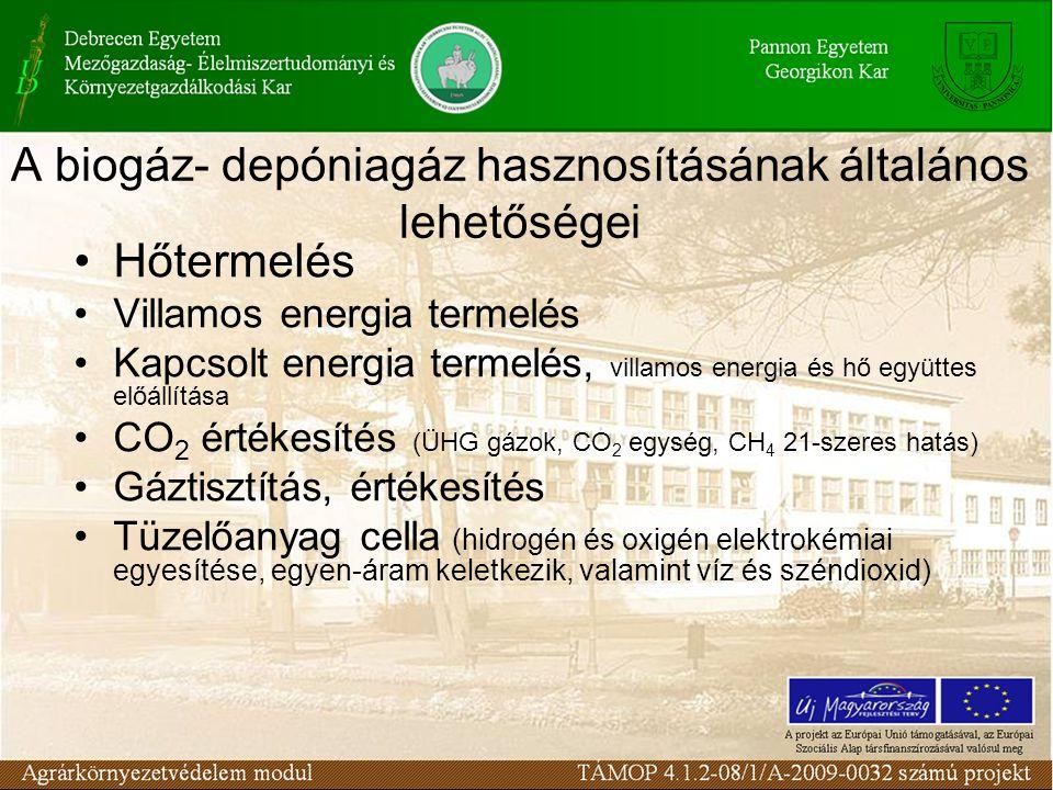 A biogáz- depóniagáz hasznosításának általános lehetőségei