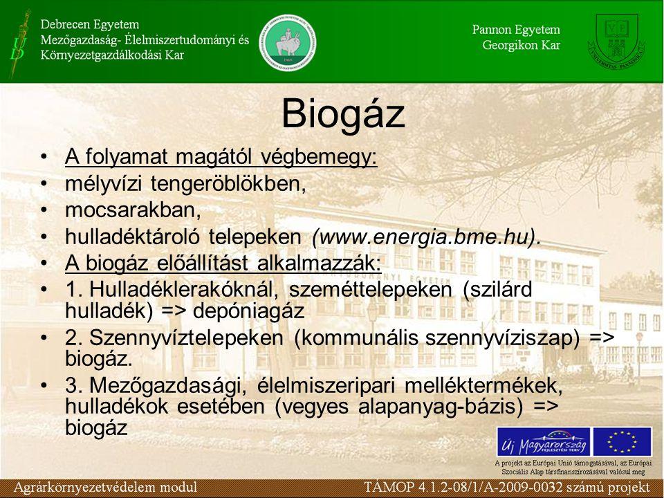 Biogáz A folyamat magától végbemegy: mélyvízi tengeröblökben,