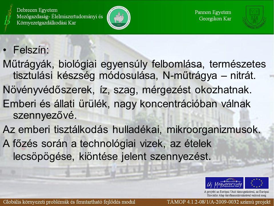 Felszín: Műtrágyák, biológiai egyensúly felbomlása, természetes tisztulási készség módosulása, N-műtrágya – nitrát.