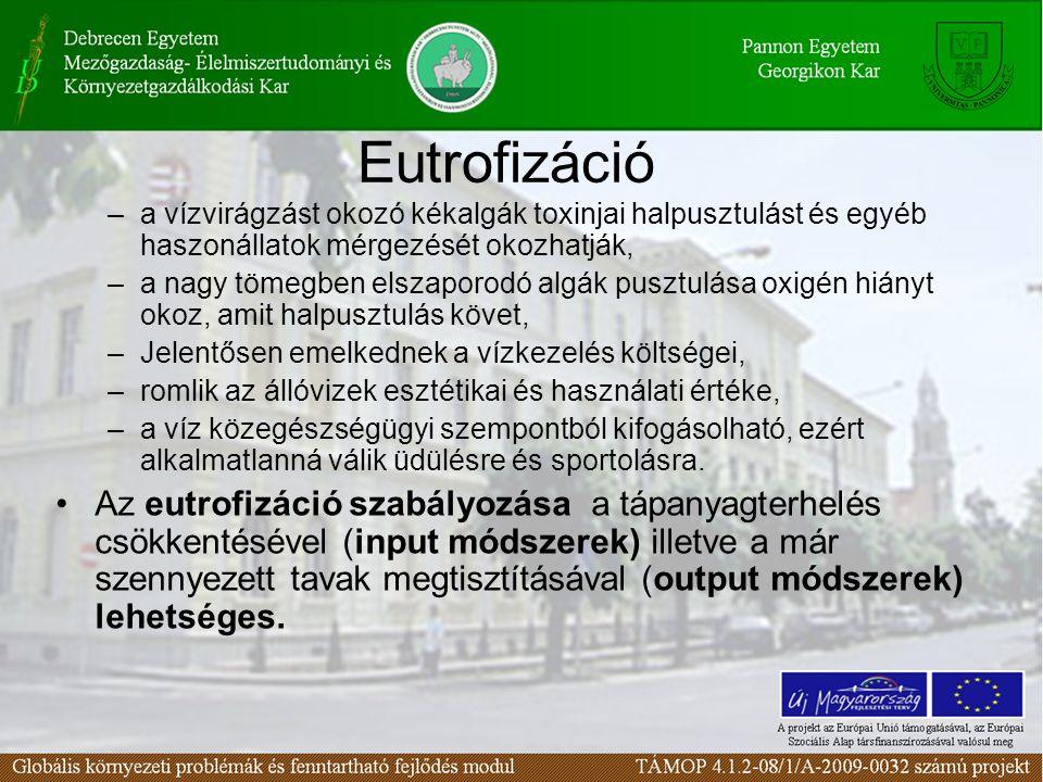 Eutrofizáció a vízvirágzást okozó kékalgák toxinjai halpusztulást és egyéb haszonállatok mérgezését okozhatják,