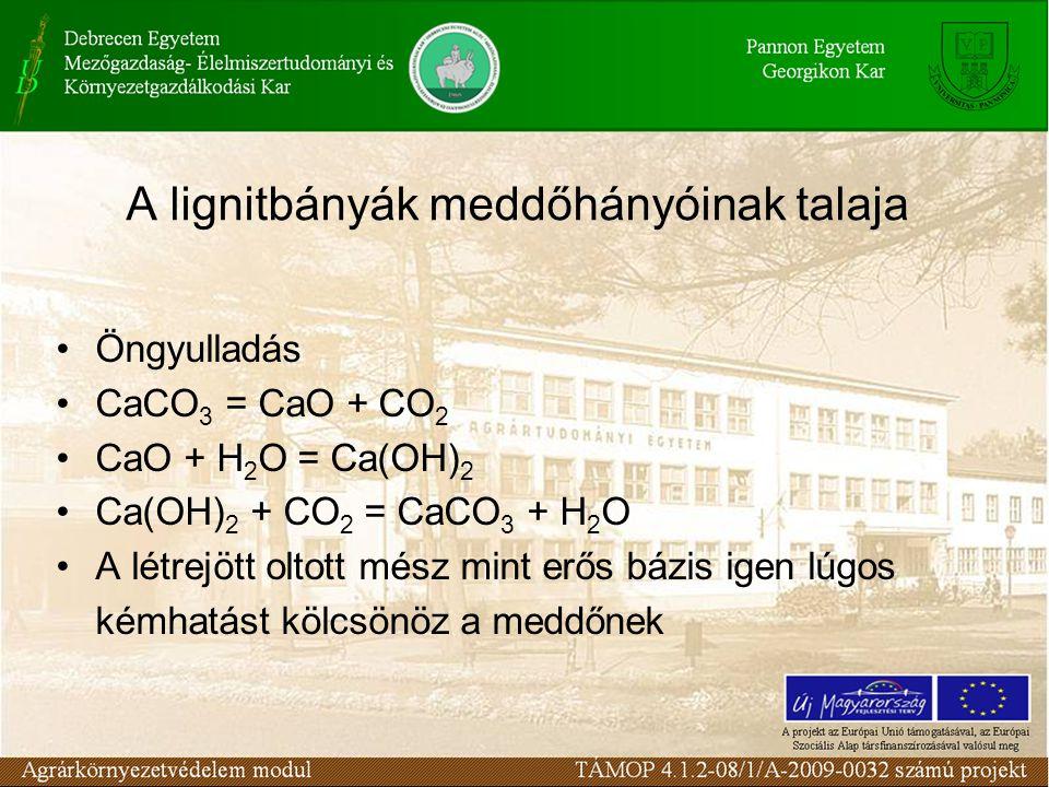 A lignitbányák meddőhányóinak talaja