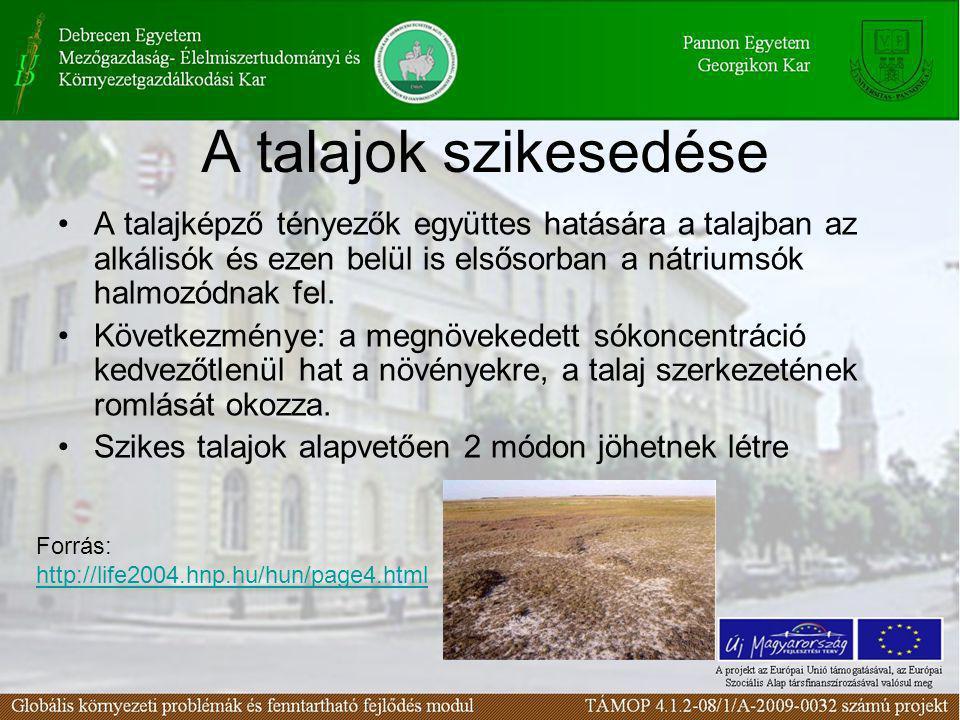 A talajok szikesedése A talajképző tényezők együttes hatására a talajban az alkálisók és ezen belül is elsősorban a nátriumsók halmozódnak fel.