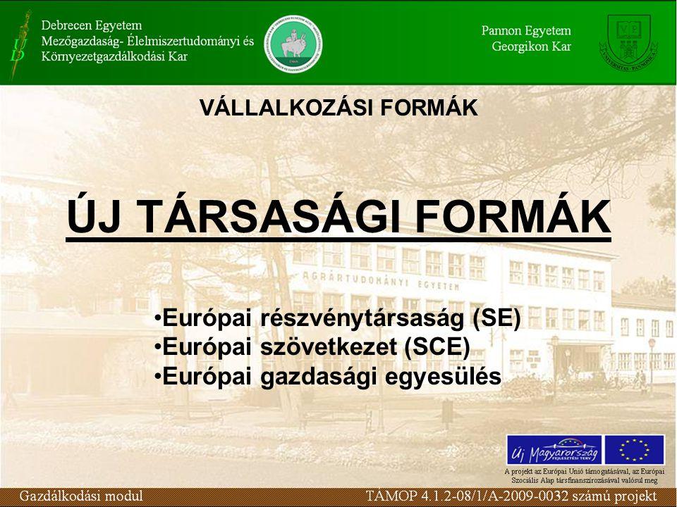 ÚJ TÁRSASÁGI FORMÁK Európai részvénytársaság (SE)