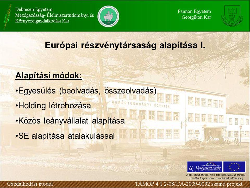 Európai részvénytársaság alapítása I.