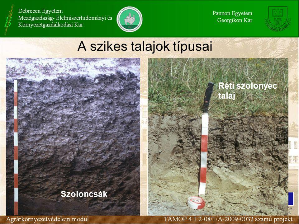 A szikes talajok típusai
