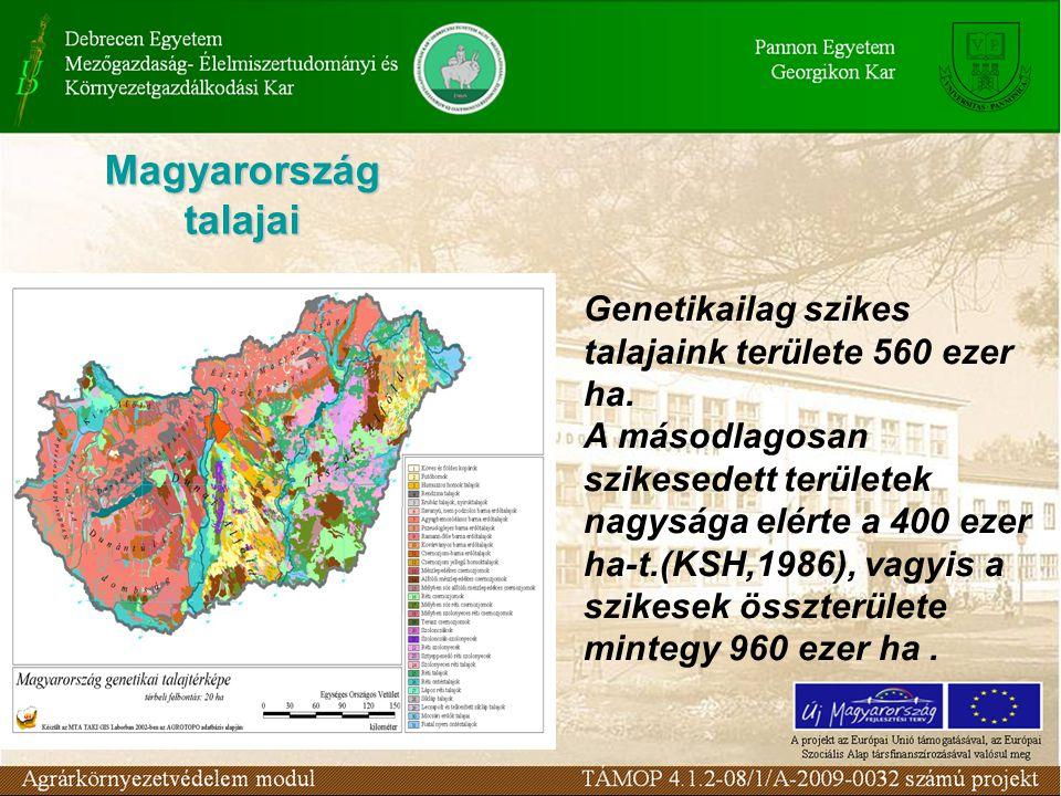 Magyarország talajai Genetikailag szikes talajaink területe 560 ezer ha.