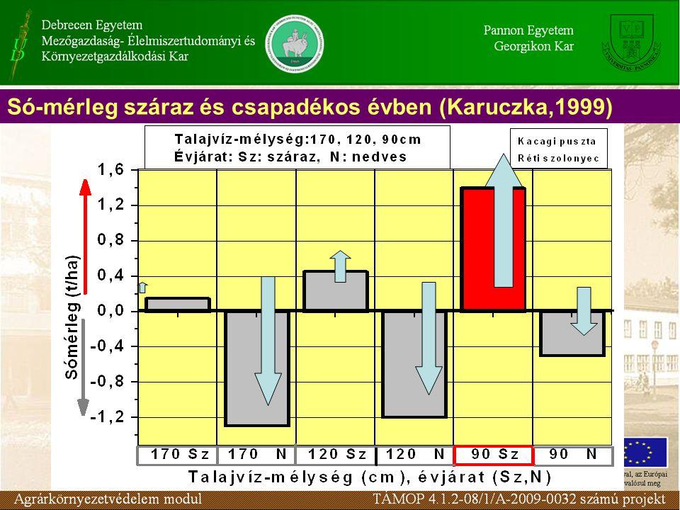 Só-mérleg száraz és csapadékos évben (Karuczka,1999)