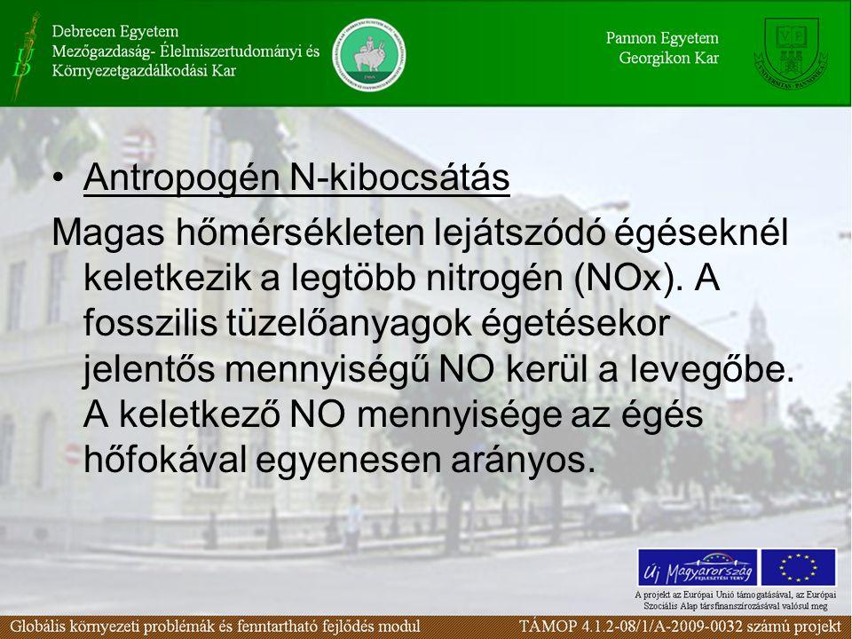 Antropogén N-kibocsátás
