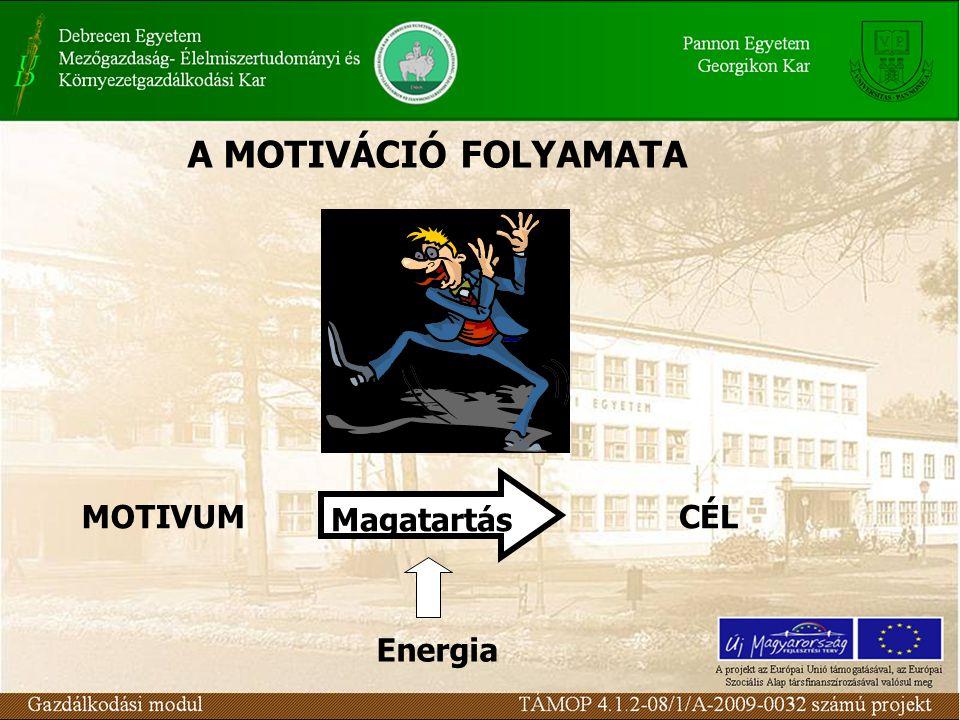 A MOTIVÁCIÓ FOLYAMATA Magatartás MOTIVUM CÉL Energia