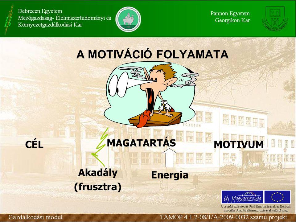 A MOTIVÁCIÓ FOLYAMATA MAGATARTÁS CÉL MOTIVUM Energia Akadály