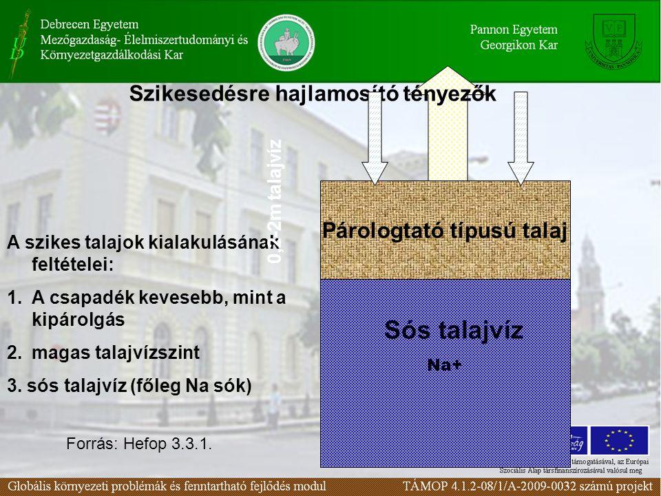 Párologtató típusú talaj