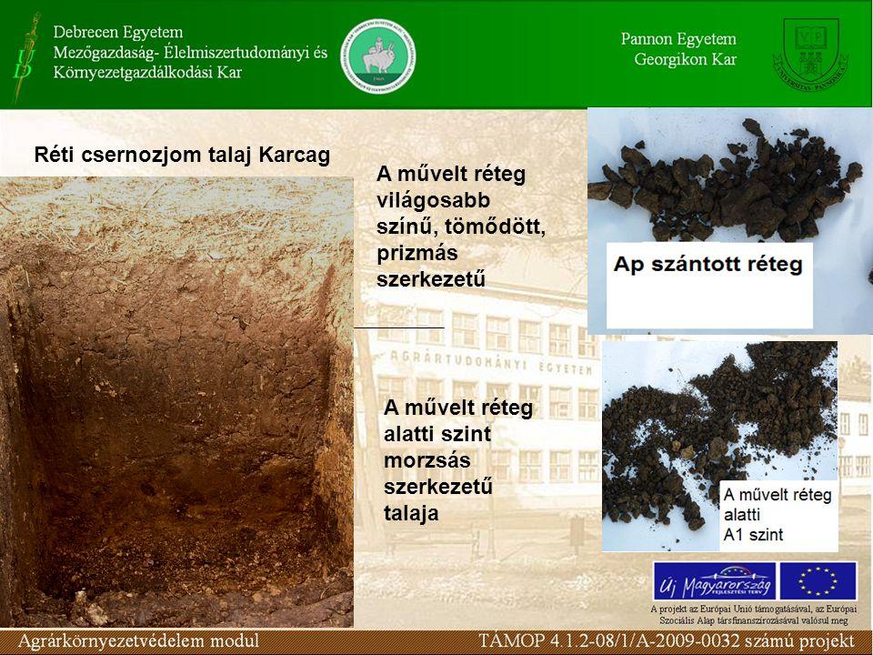 Réti csernozjom talaj Karcag