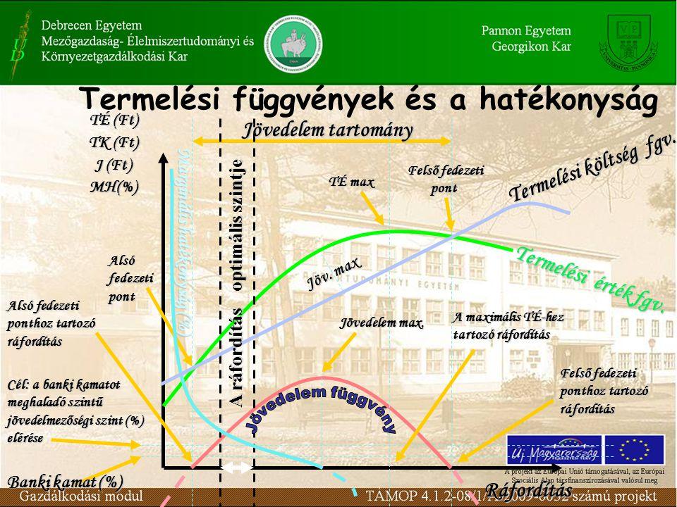 Termelési függvények és a hatékonyság