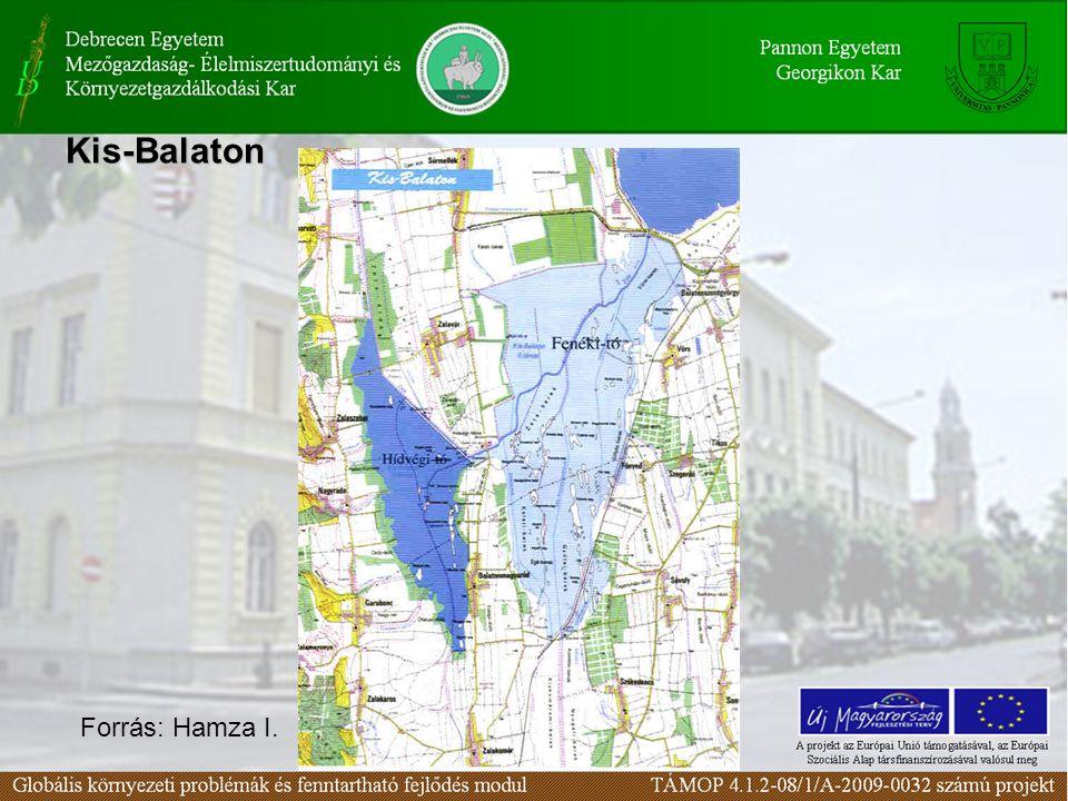 Kis-Balaton Forrás: Hamza I.