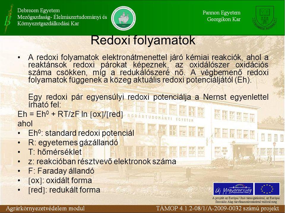 Redoxi folyamatok