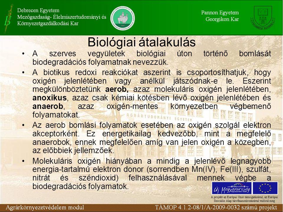 Biológiai átalakulás A szerves vegyületek biológiai úton történő bomlását biodegradációs folyamatnak nevezzük.
