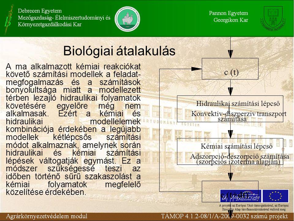 Biológiai átalakulás c (t) c (t+dt)