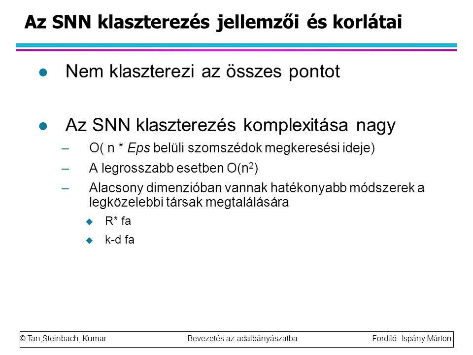 Az SNN klaszterezés jellemzői és korlátai