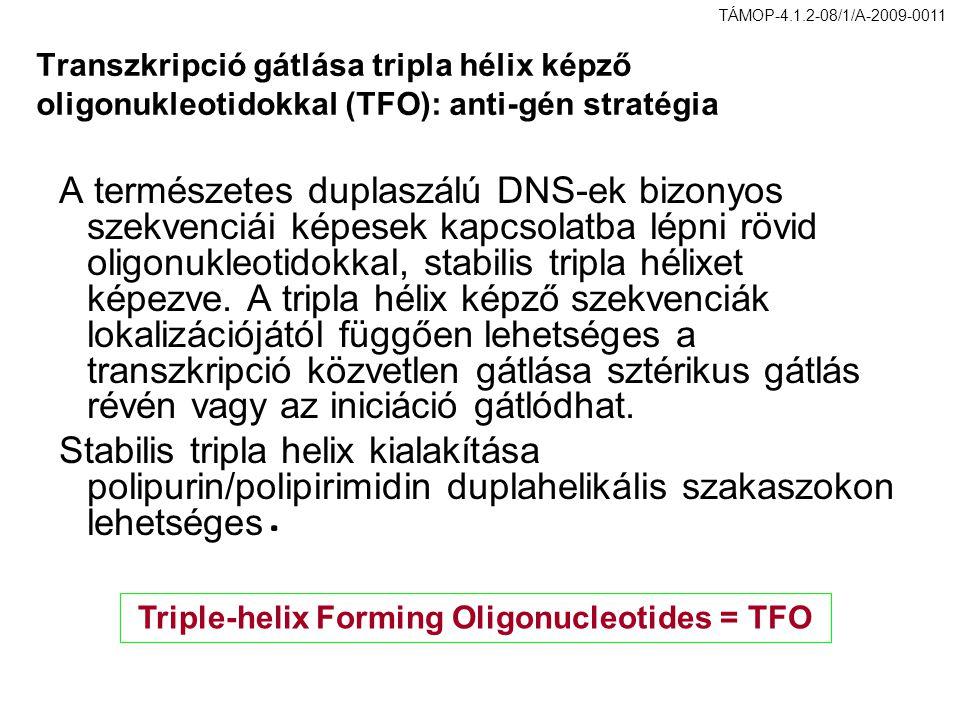 Triple-helix Forming Oligonucleotides = TFO