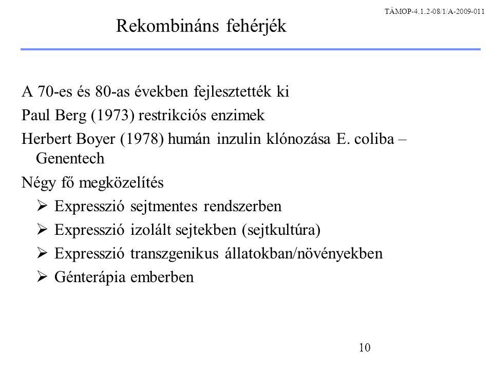 Rekombináns fehérjék A 70-es és 80-as években fejlesztették ki