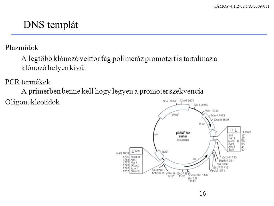 TÁMOP-4.1.2-08/1/A-2009-011 DNS templát. Plazmidok. A legtöbb klónozó vektor fág polimeráz promotert is tartalmaz a klónozó helyen kívül.