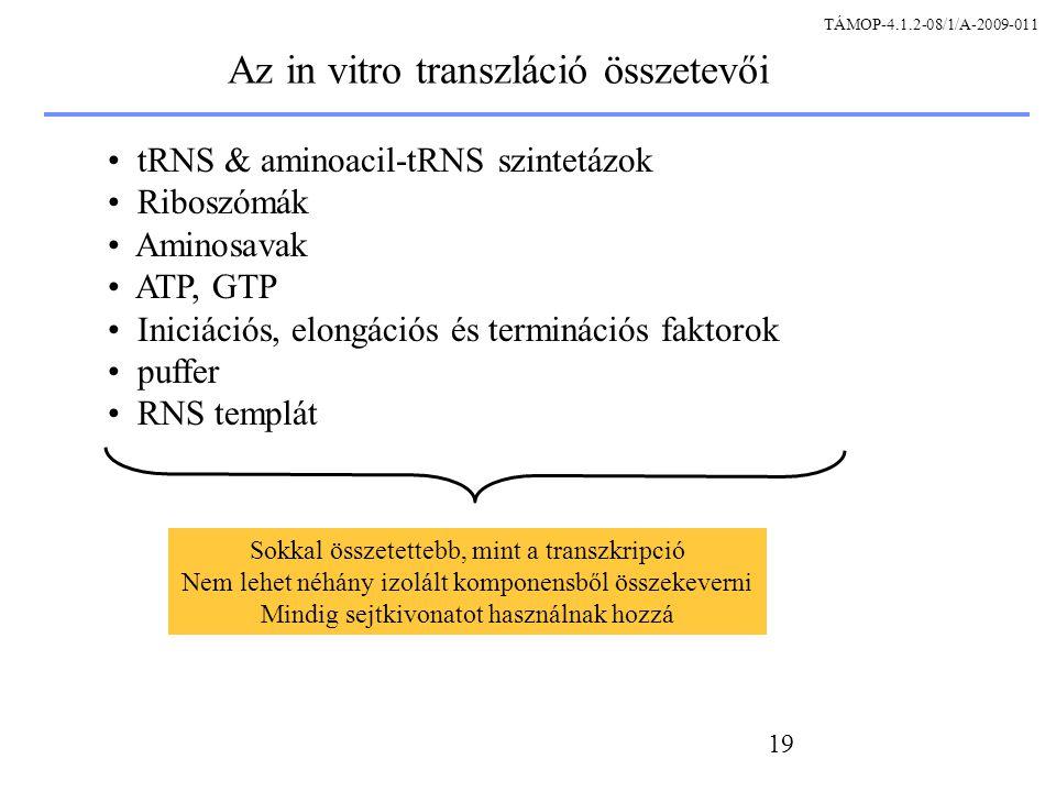 Az in vitro transzláció összetevői