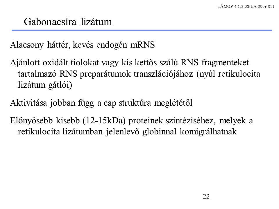 Gabonacsíra lizátum Alacsony háttér, kevés endogén mRNS